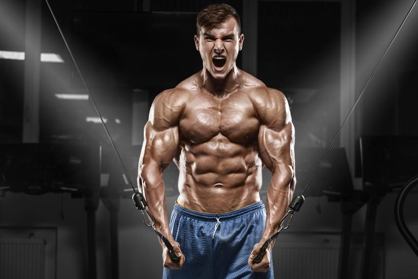 Musculation Seance Pectoraux En Salle Prise De Masse Vulgaris Medical