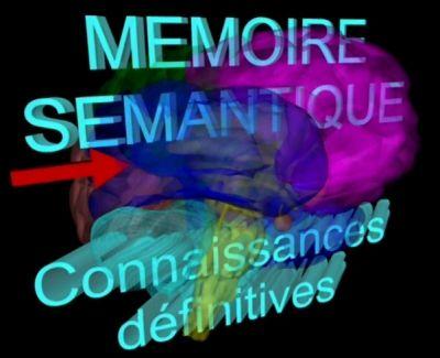 Mémoire sémantique, mémoire explicite, mémoire épisodique