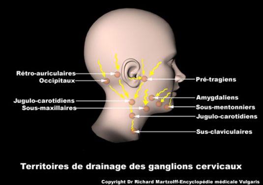 La hernie lombaire les signes le traitement