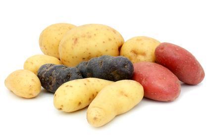 La pomme de terre vulgaris m dical - La pomme de terre est elle un legume ...