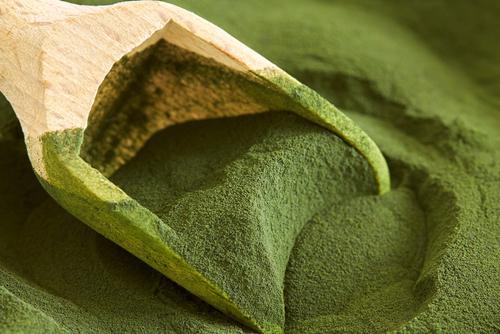Chlorella, l'algue détox: l'essentiel à savoir