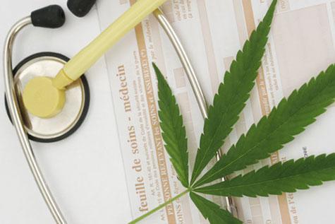 Le cannabis thérapeutique autorisé en France