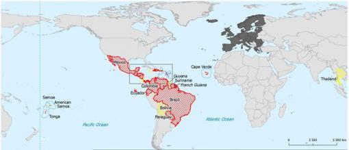 Zika : quels sont les pays touchés ?
