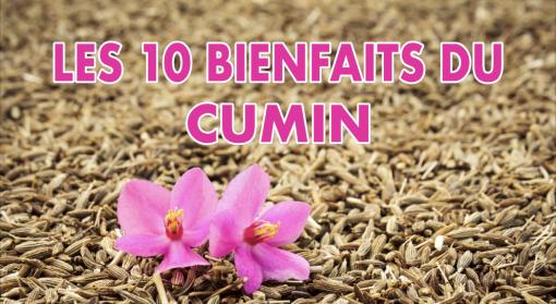 TOP 10 des bienfaits du CUMIN