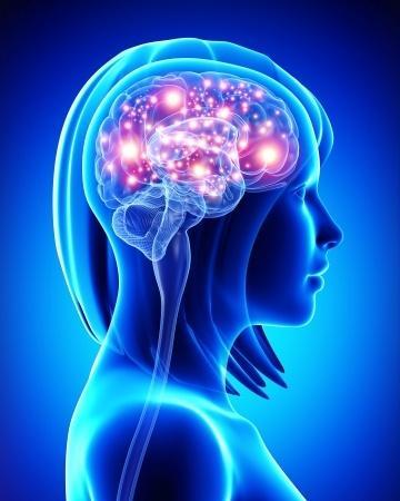 6 règles simples pour protéger son cerveau