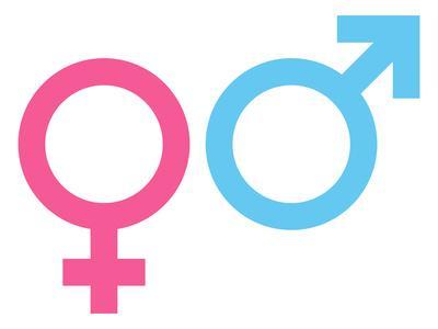 Comment agissent les hormones sexuelles dans notre corps?