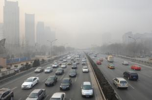 La pollution de l'air aggrave les allergies