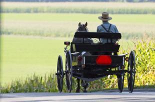 Pourquoi les Amish n'ont-ils pas de cancer ?