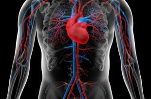 Alimentation : connaissez-vous l'ennemi numéro 1 de votre coeur ?