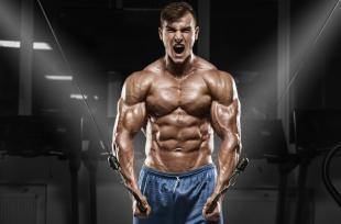 Musculation : Séance pectoraux en salle (Prise de masse)
