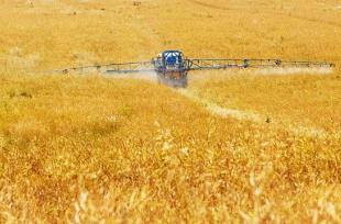 Impact des pesticides sur la santé