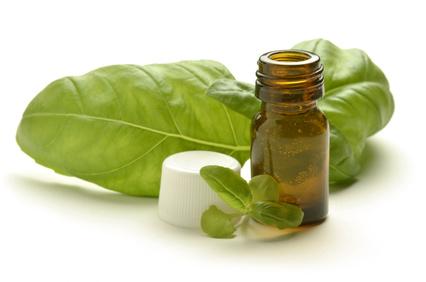 maison saine 4 produits naturels pour liminer les mauvaises herbes vulgaris m dical. Black Bedroom Furniture Sets. Home Design Ideas